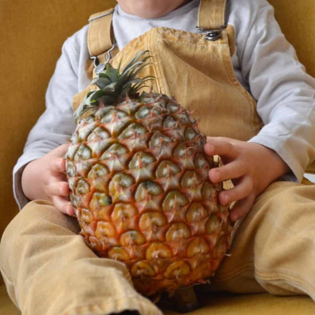 Alimentação Infantil